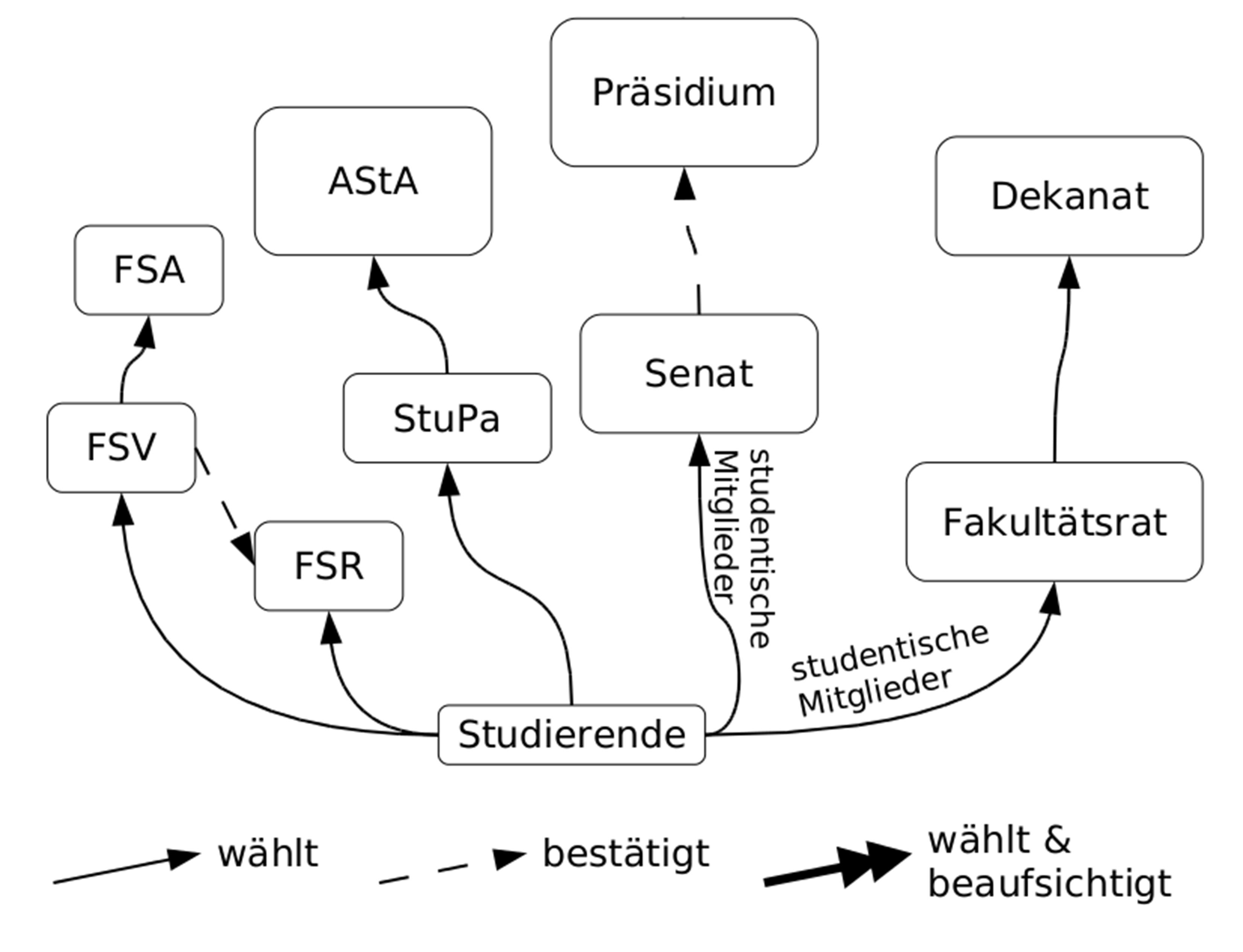 Grafik zum Aufbau der Studierendenschaft